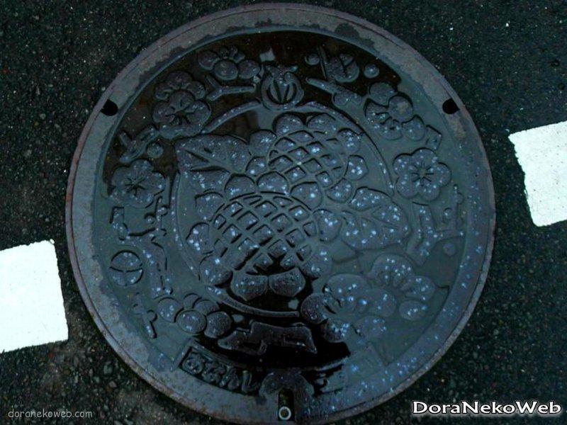 阿南市(徳島県)の「フタw」Part2