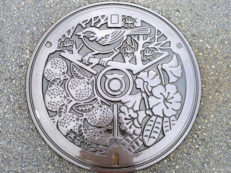 佐那河内村(徳島県)の「フタw」