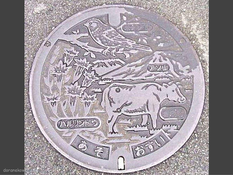 阿蘇市(熊本県)の「フタw」
