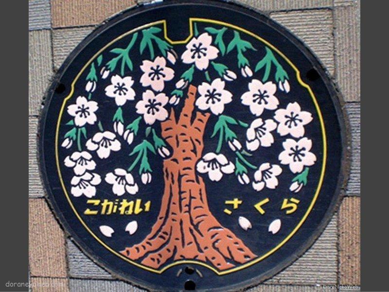 小金井市(東京都)の「フタw」Part2