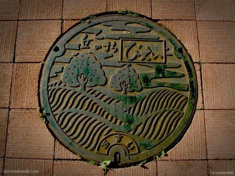 美瑛町(北海道)の「フタw」