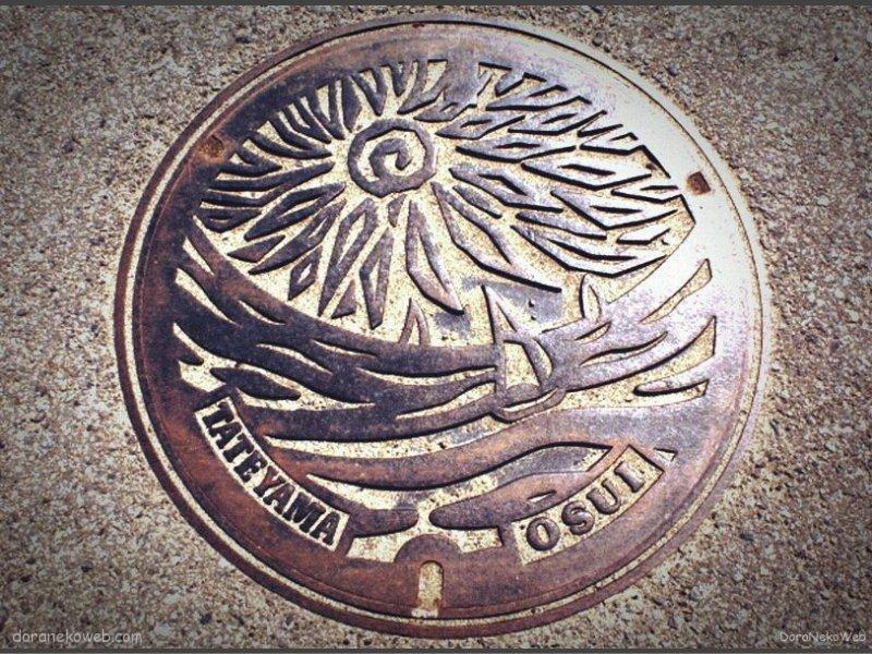 館山市(千葉県)の「フタw」