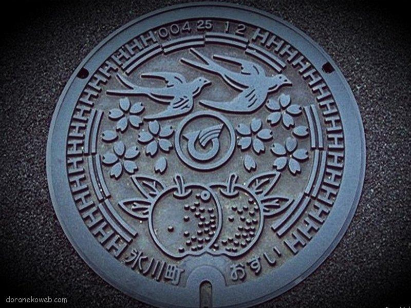 氷川町(熊本県)の「フタw」
