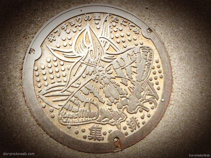 揖斐川町(岐阜県)の「フタw」