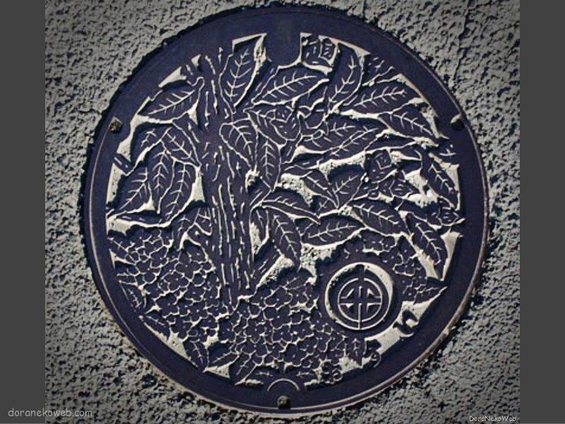 開成町(神奈川県)の「フタw」