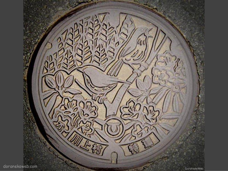 川上村(長野県)の「フタw」