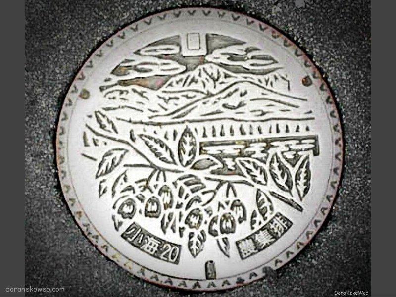 小海町(長野県)の「フタw」