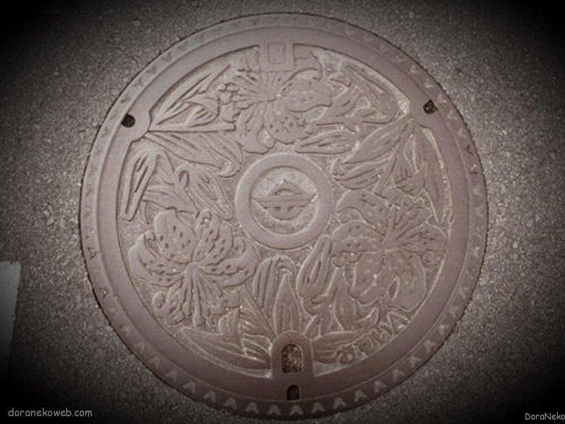 宗像市(福岡県)の「フタw」