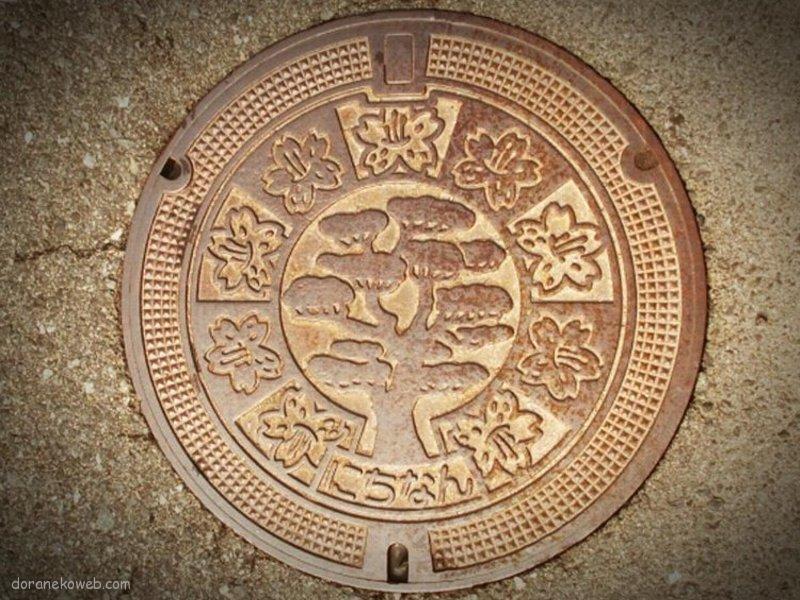 日南町(鳥取県)の「フタw」