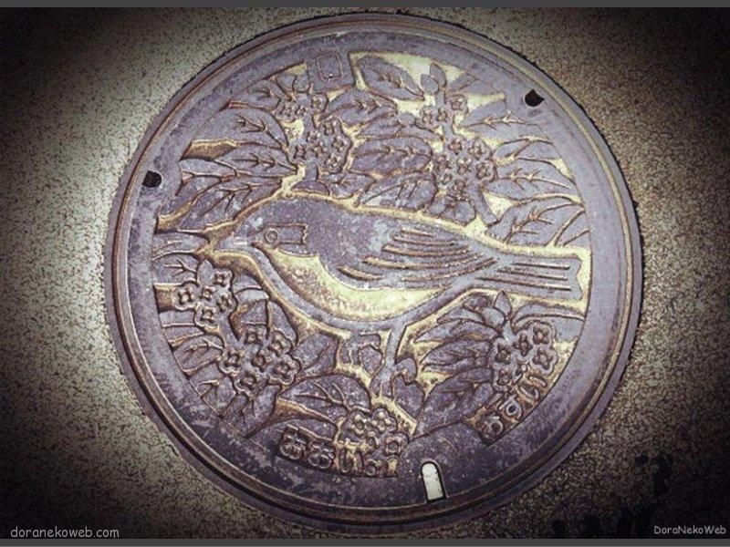 大井町(神奈川県)の「フタw」