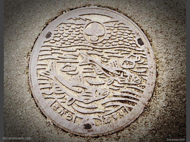 相良村(熊本県)の「フタw」