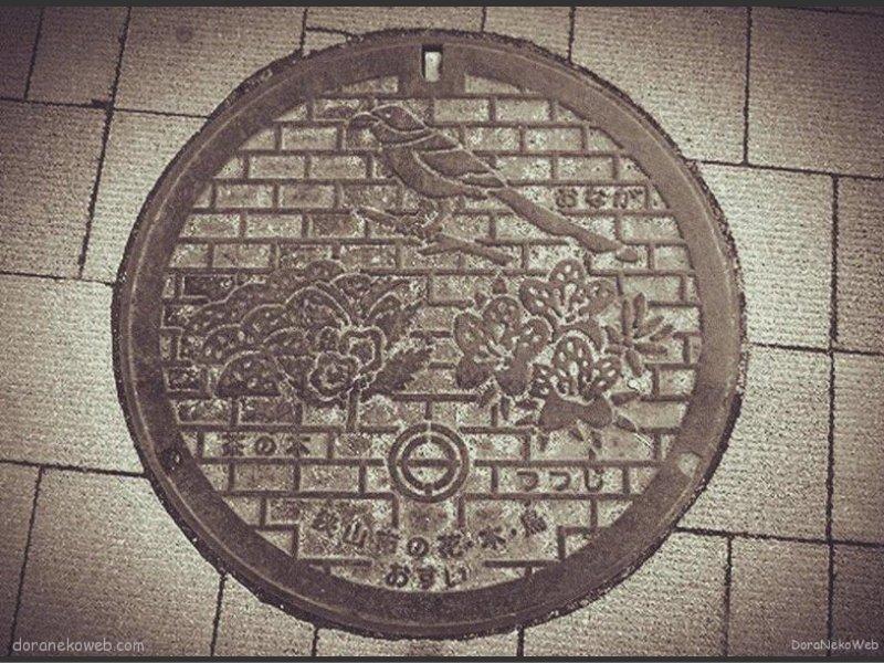 狭山市(埼玉県)の「フタw」