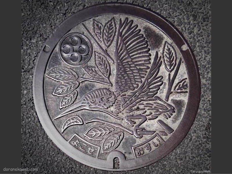 横瀬町(埼玉県)の「フタw」