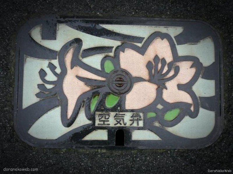 阿蘇市(熊本県)の「フタw」Part2