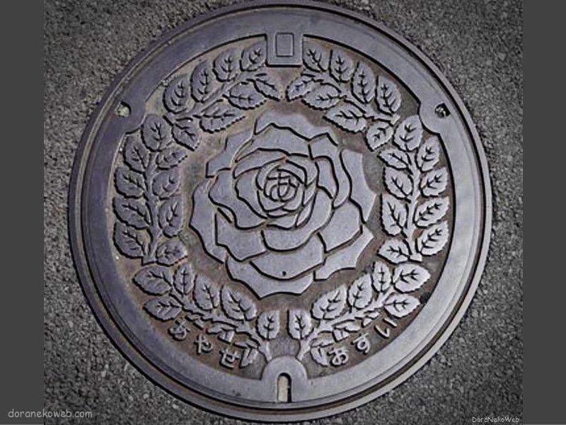綾瀬市(神奈川県)の「フタw」Part2