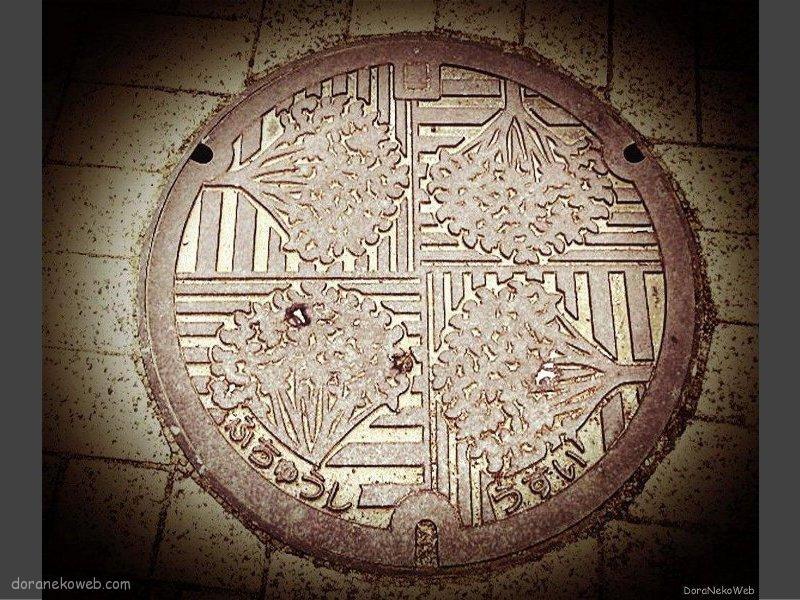 府中市(東京都)の「フタw」Part3