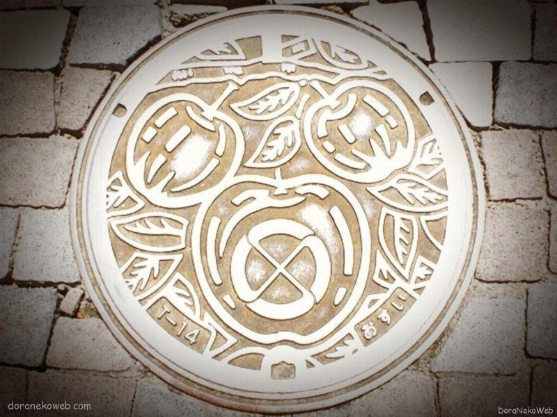 飯田市(長野県)の「フタw」Part2