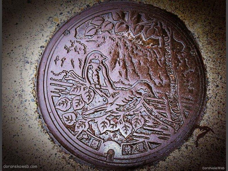 長野市(長野県)の「フタw」Part8