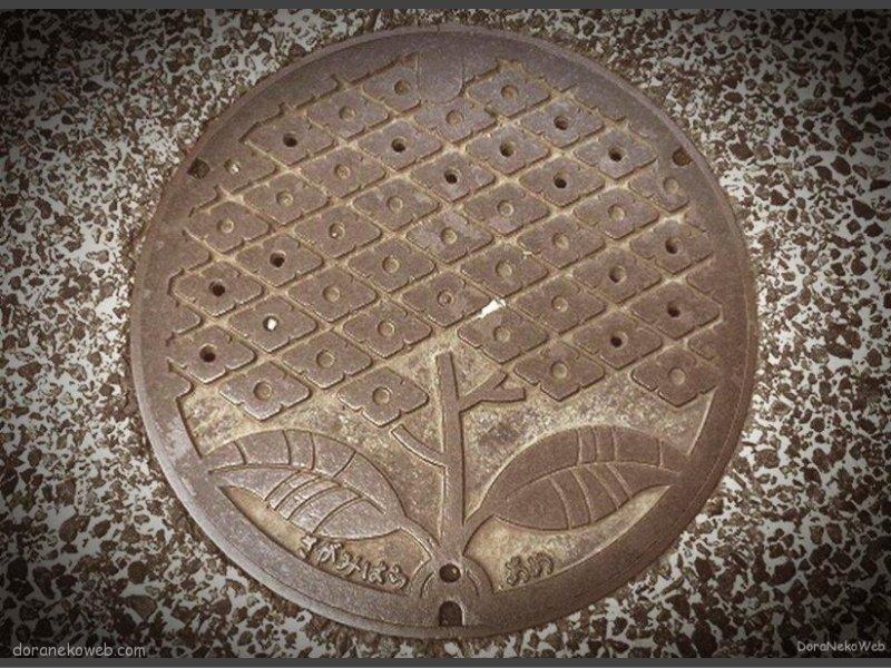 相模原市(神奈川県)の「フタw」Part4