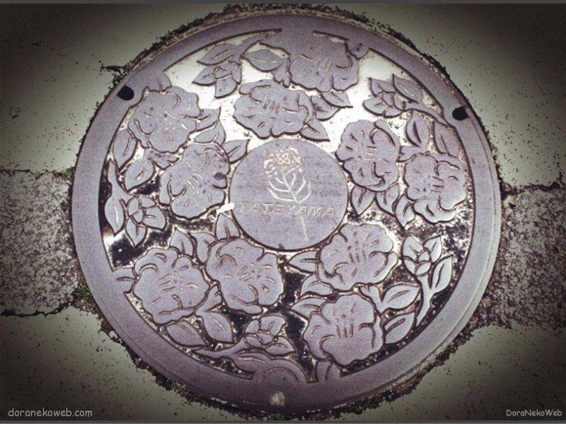 館山市(千葉県)の「フタw」Part2