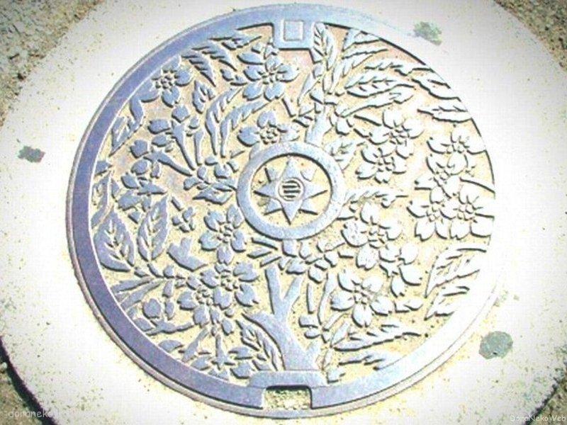 横須賀市(神奈川県)の「フタw」Part3