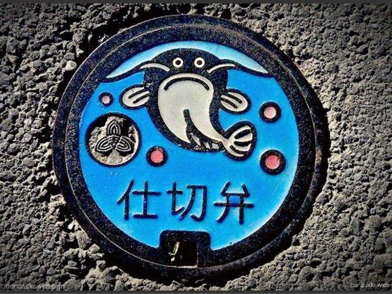 吉川市(埼玉県)の「フタw」Part2