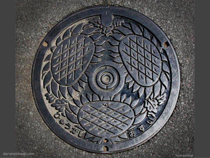 日向市(宮崎県)の「フタw」Part4