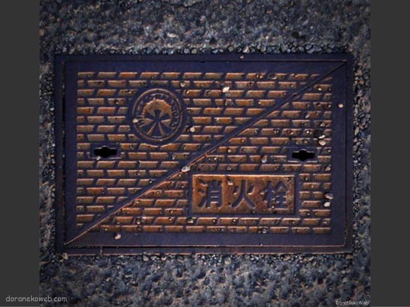 皆野町(埼玉県)の「フタw」Part2