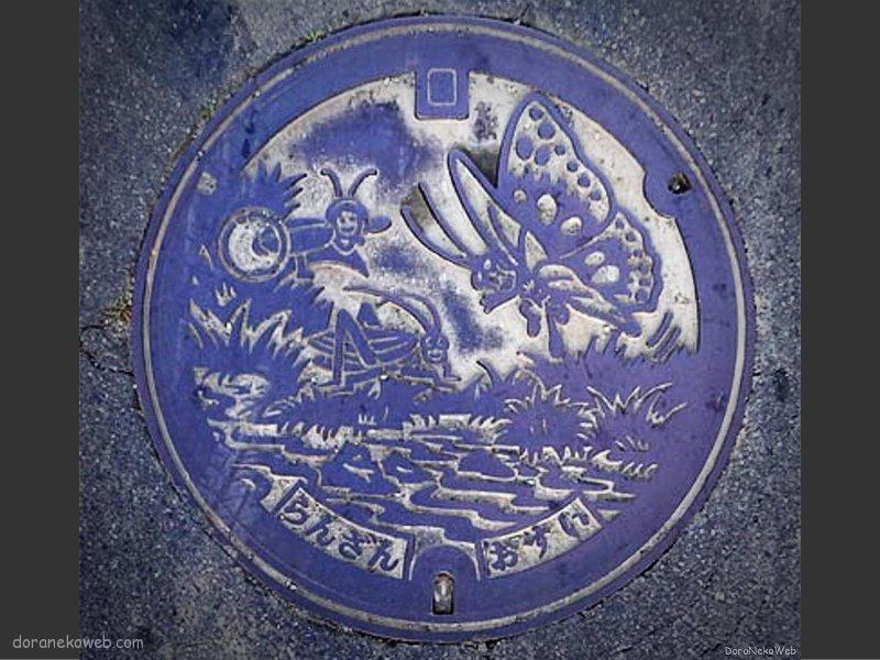 嵐山町(埼玉県)の「フタw」Part2