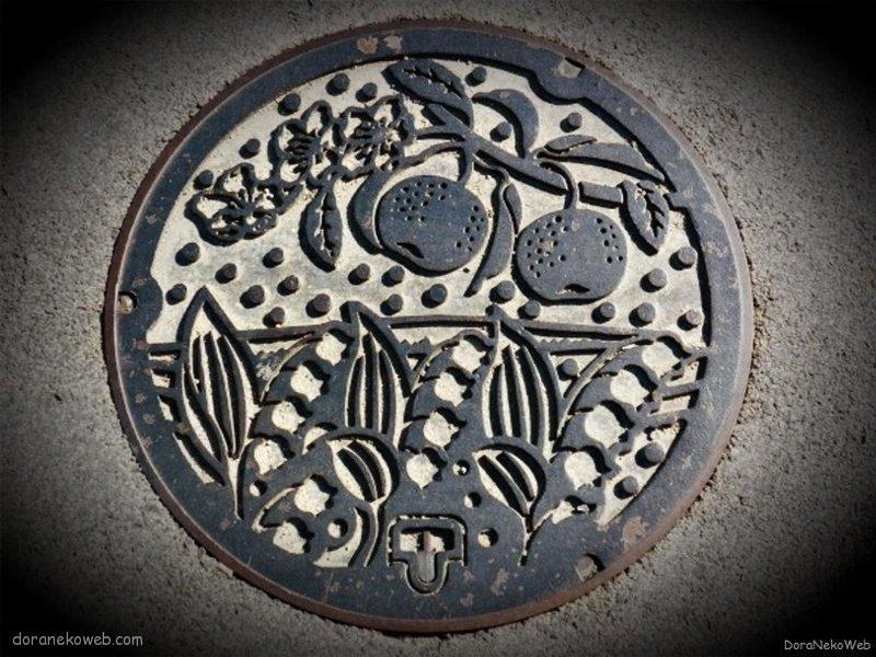 世羅町(広島県)の「フタw」Part2