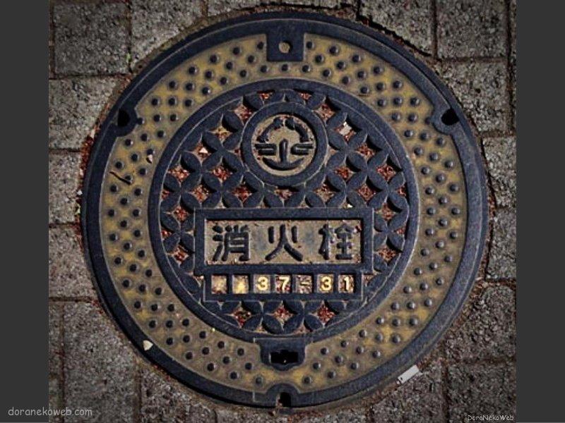 坂戸市(埼玉県)の「フタw」Part3