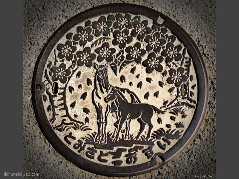 富里市(千葉県)の「フタw」