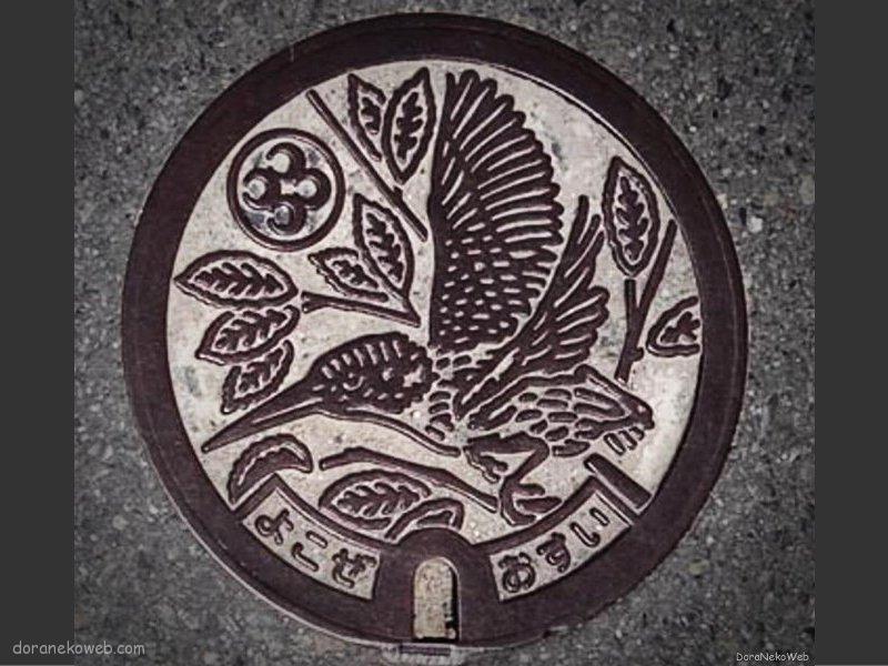 横瀬町(埼玉県)の「フタw」Part2