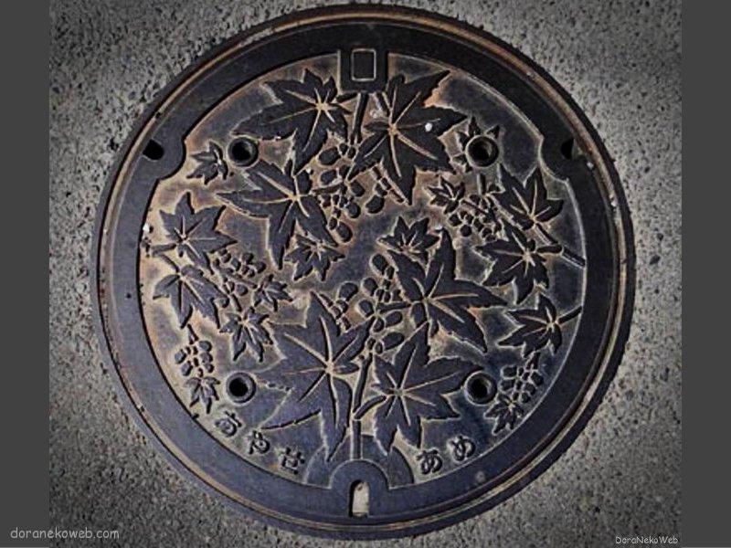 綾瀬市(神奈川県)の「フタw」Part3