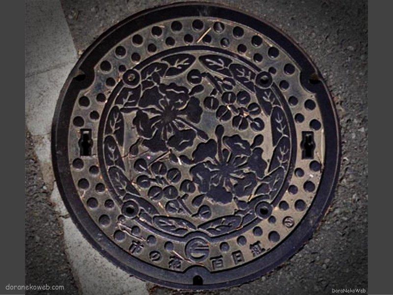 調布市(東京都)の「フタw」Part4