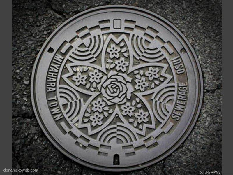 氷川町(熊本県)の「フタw」Part4