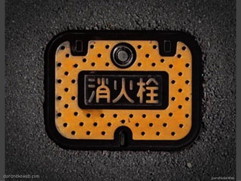 伊豆の国市(静岡県)の「フタw」Part5