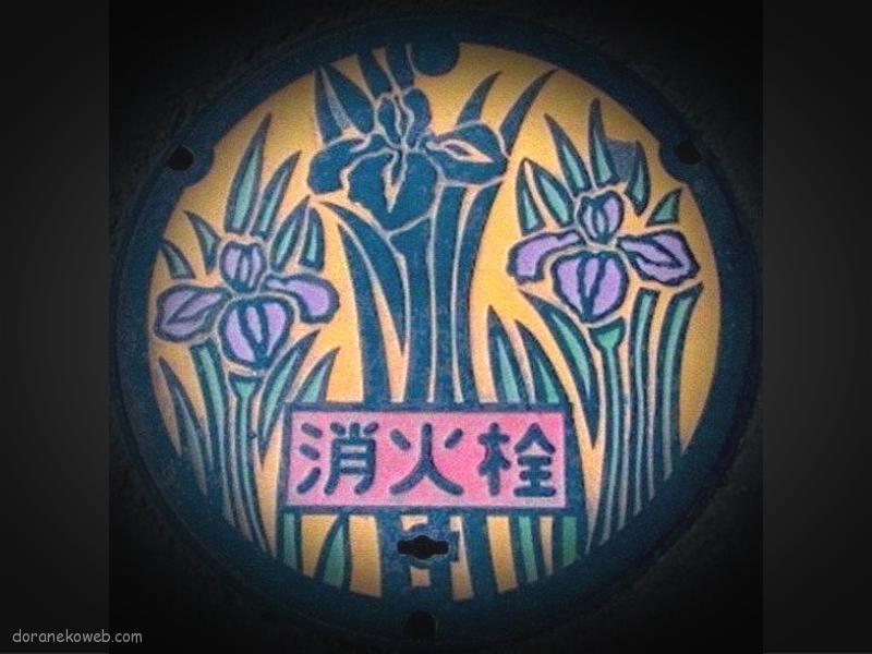 郡山市(福島県)の「フタw」Part9