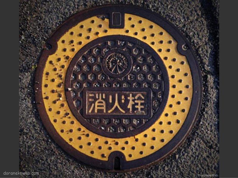 皆野町(埼玉県)の「フタw」Part3
