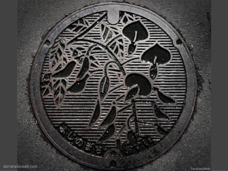相模原市(神奈川県)の「フタw」Part10