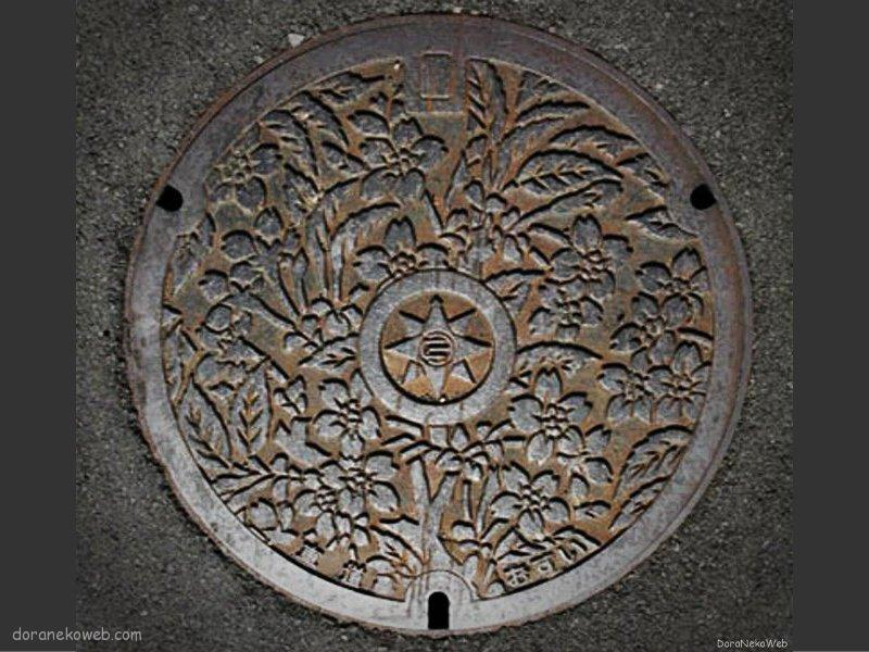 横須賀市(神奈川県)の「フタw」Part5