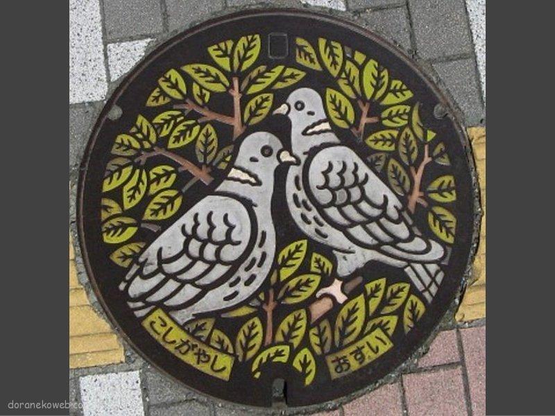 越谷市(埼玉県)の「フタw」Part6