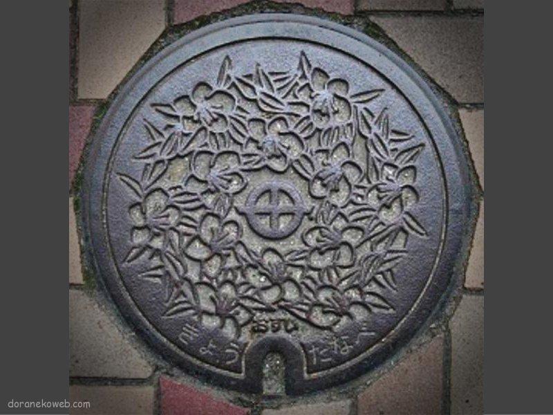 京田辺市(京都府)の「フタw」Part9