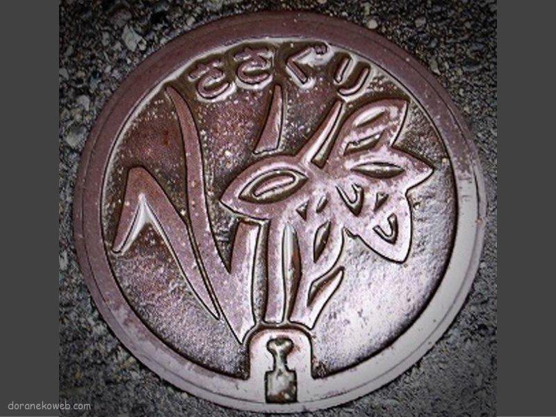 篠栗町(福岡県)の「フタw」Part2