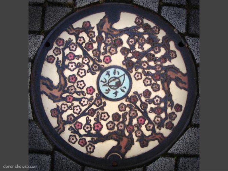 酒々井町(千葉県)の「フタw」Part4