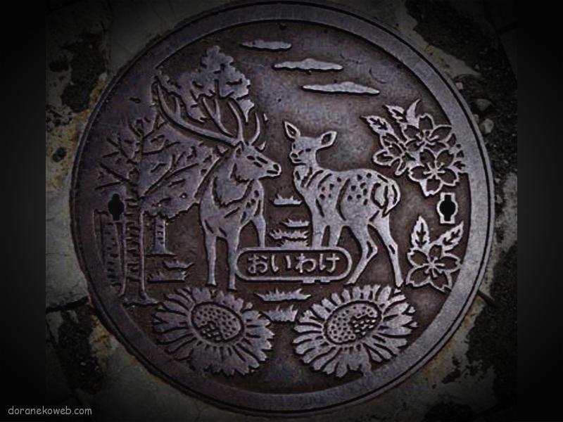 安平町(北海道)の「フタw」Part5