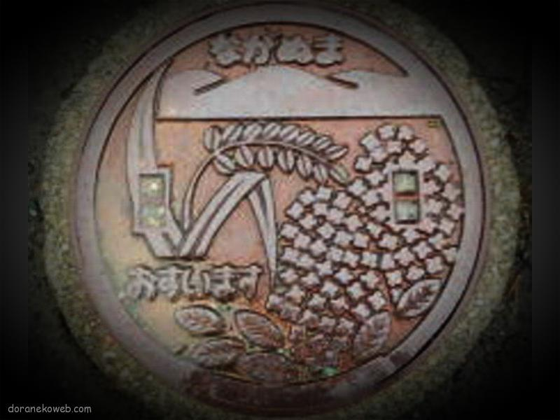 長沼町(北海道)の「フタw」Part2