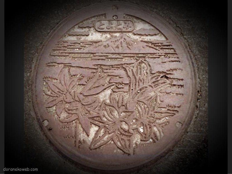 豊富町(北海道)の「フタw」Part2