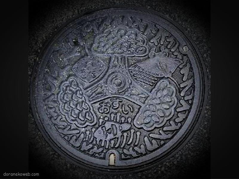 石垣市(沖縄県)の「フタw」Part7