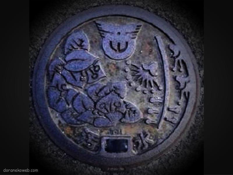 西原町(沖縄県)の「フタw」Part4